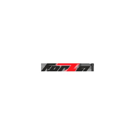 Forza (Россия)
